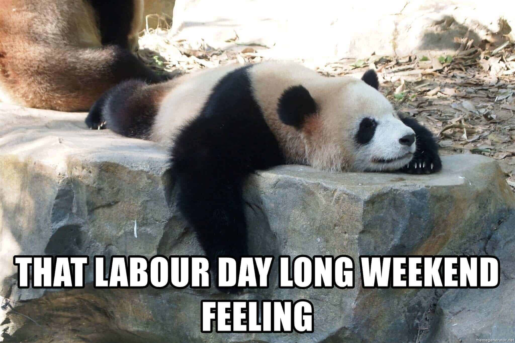 labor day meme funny